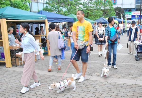 ペットを連れた大勢の人でにぎわうバンバ市民広場