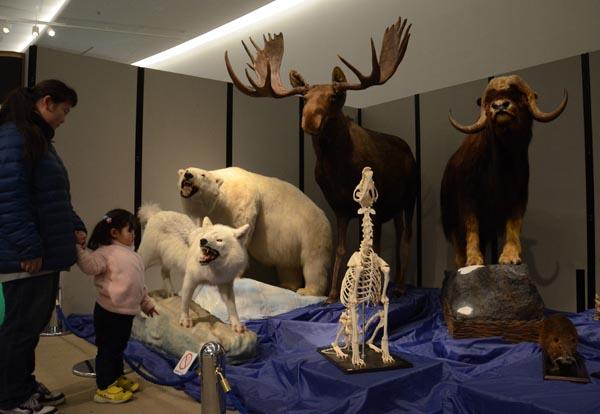 0207自然史博物館が収集した標本が並ぶ特別展